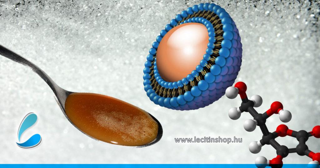 mi a liposzómális c-vitamin hatása adagolása